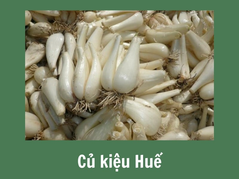 cach-muoi-kieu-ngon (3)