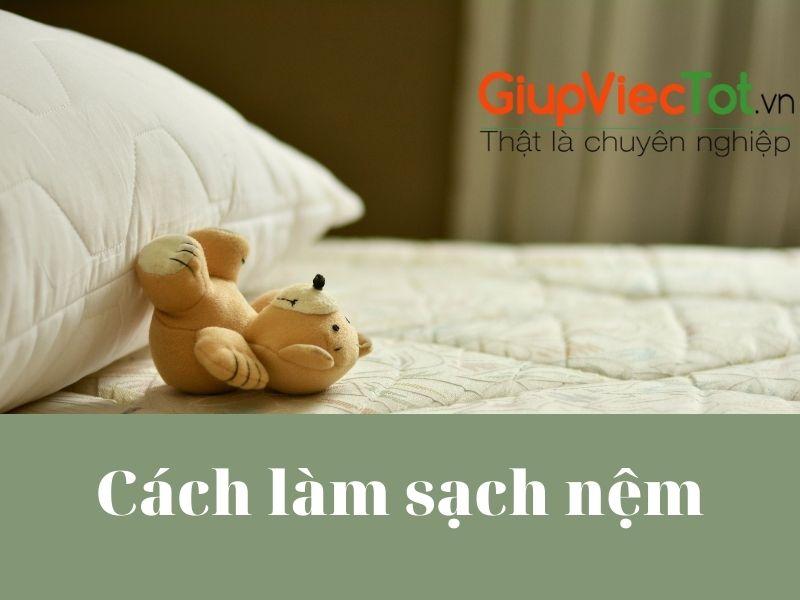 cach-lam-sach-nem