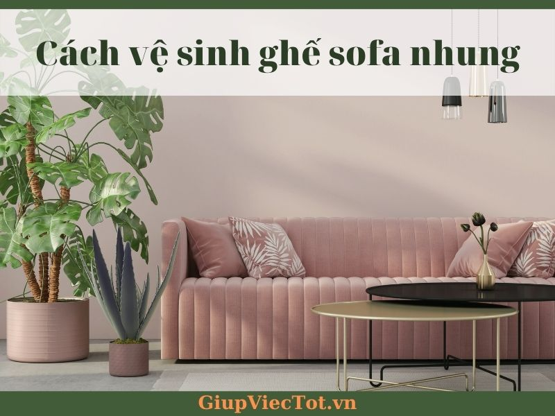 cach-ve-sinh-ghe-sofa-nhung