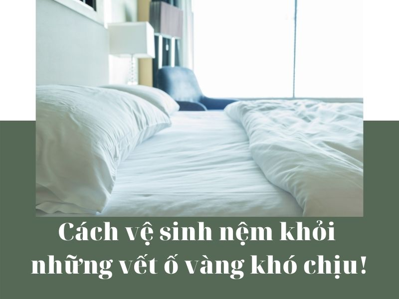 cach-ve-sinh-nem