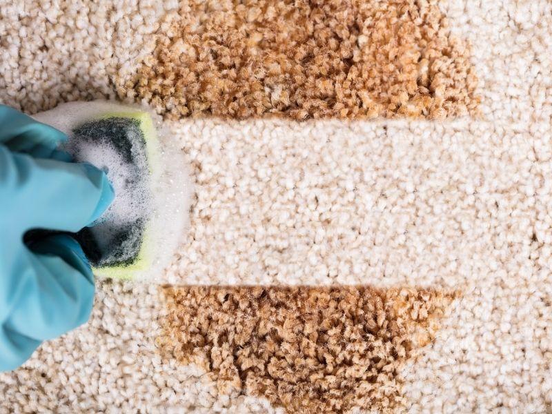 giá giặt thảm tại nhà cạnh tranh nhất khu vực Hà Nội