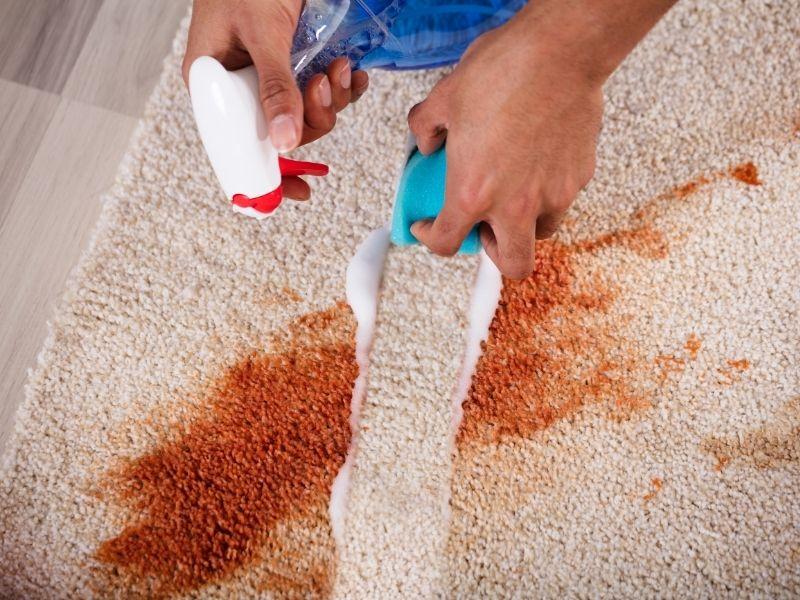 giá giặt thảm tại nhà tương xứng với chất lượng thảm sau khi được vệ sinh