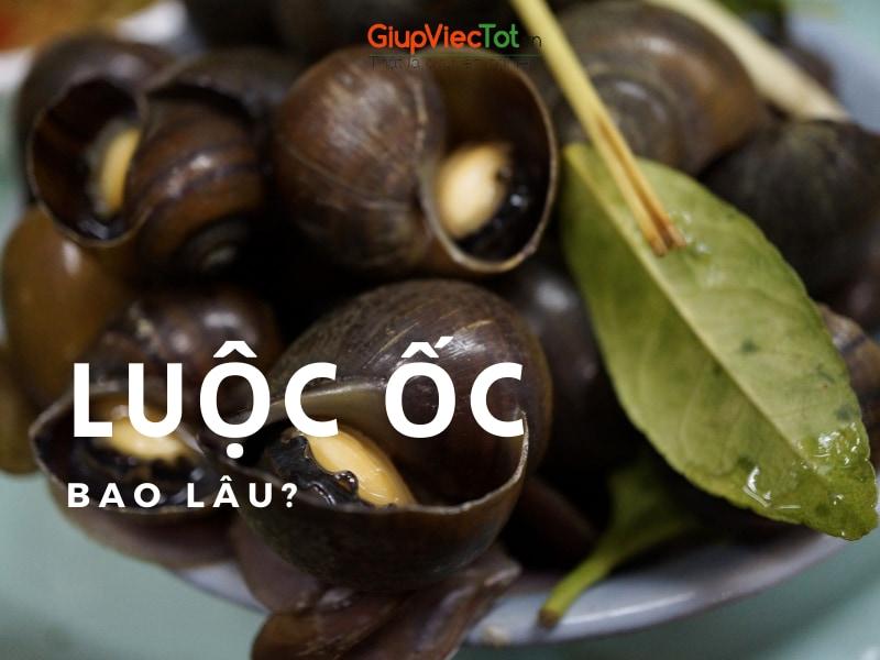 luoc-oc-bao-lau