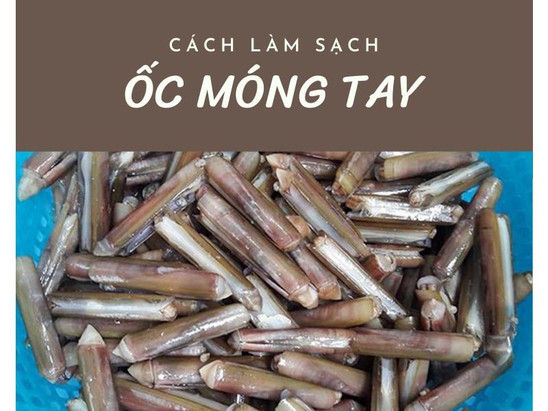 cach-lam-sach-oc-mong-tay