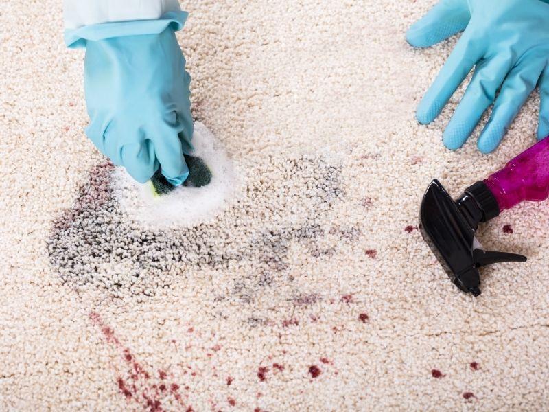 phun dung dịch giặt thảm