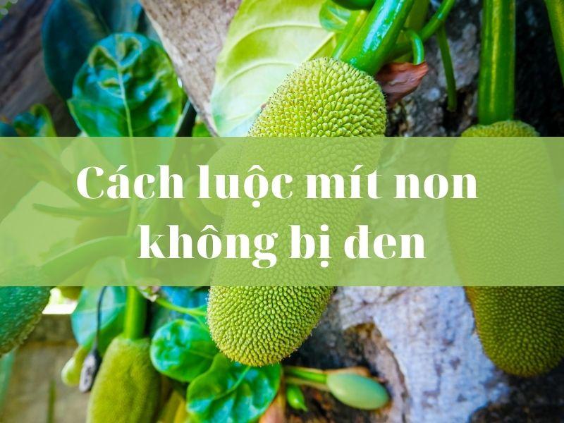 cach-luoc-mit-non-khong-bi-den